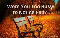 Time To Be More Productive, notice fall leave, Ken Okel professiona speaker in Miami Orlando